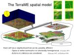 the terrame spatial model