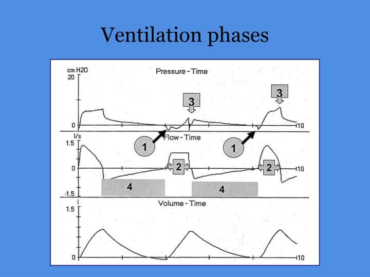 PPT - Patient – Ventilator Asynchrony PowerPoint ...