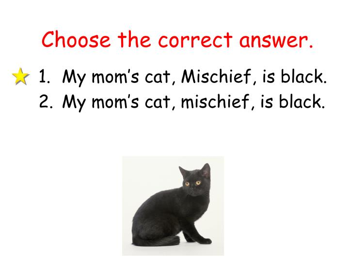 Choose the correct answer.