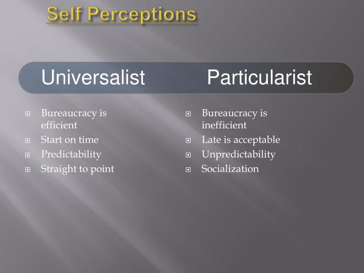 Self Perceptions