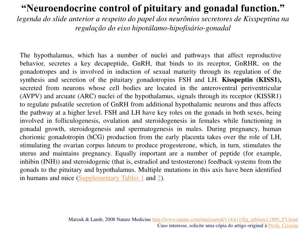 """""""Neuroendocrine control of pituitary and gonadal function."""""""