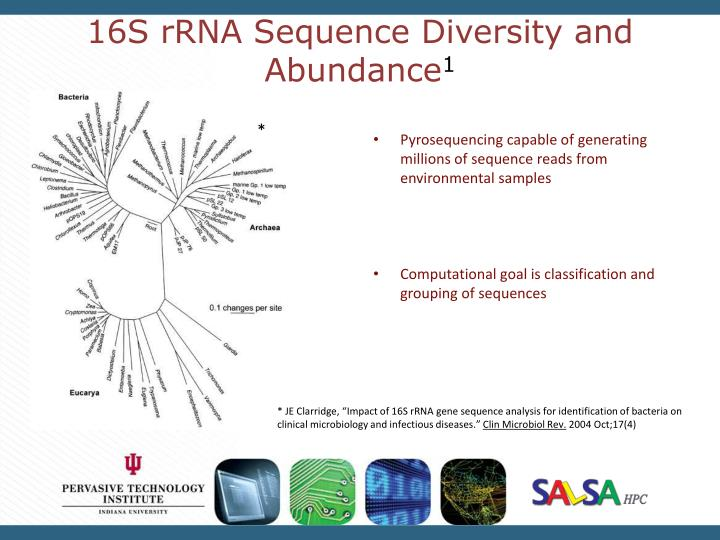 16s rrna sequence diversity and abundance 1