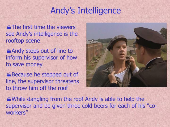 Andy's Intelligence
