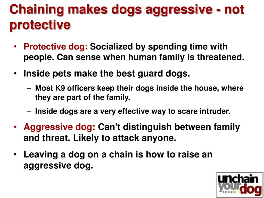 Chaining makes dogs aggressive - not protective