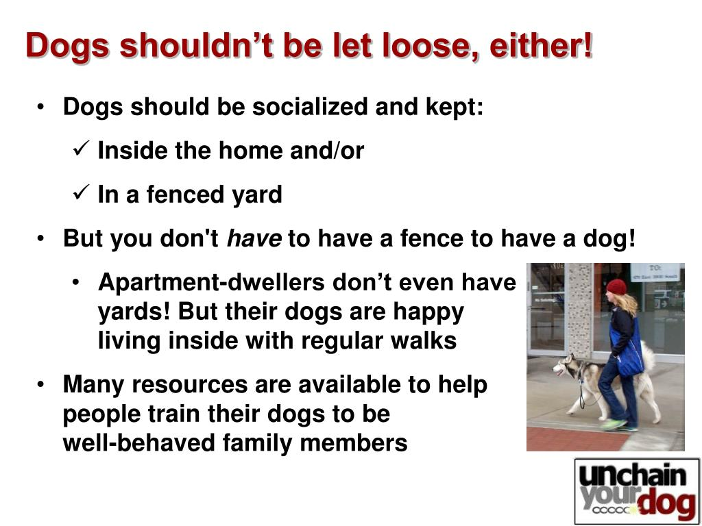Dogs shouldn't be let loose, either!