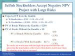 selfish stockholders accept negative npv project with large risks