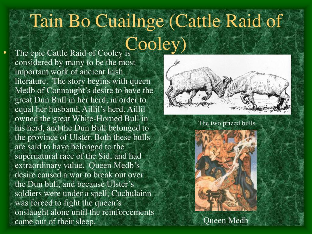 Tain Bo Cuailnge (Cattle Raid of Cooley)