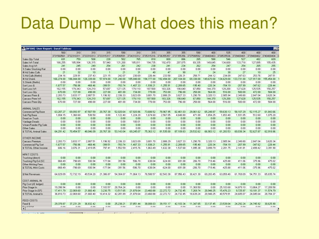 Data Dump – What does this mean?