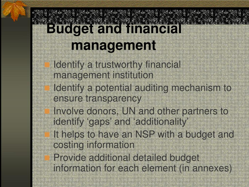 Budget and financial management