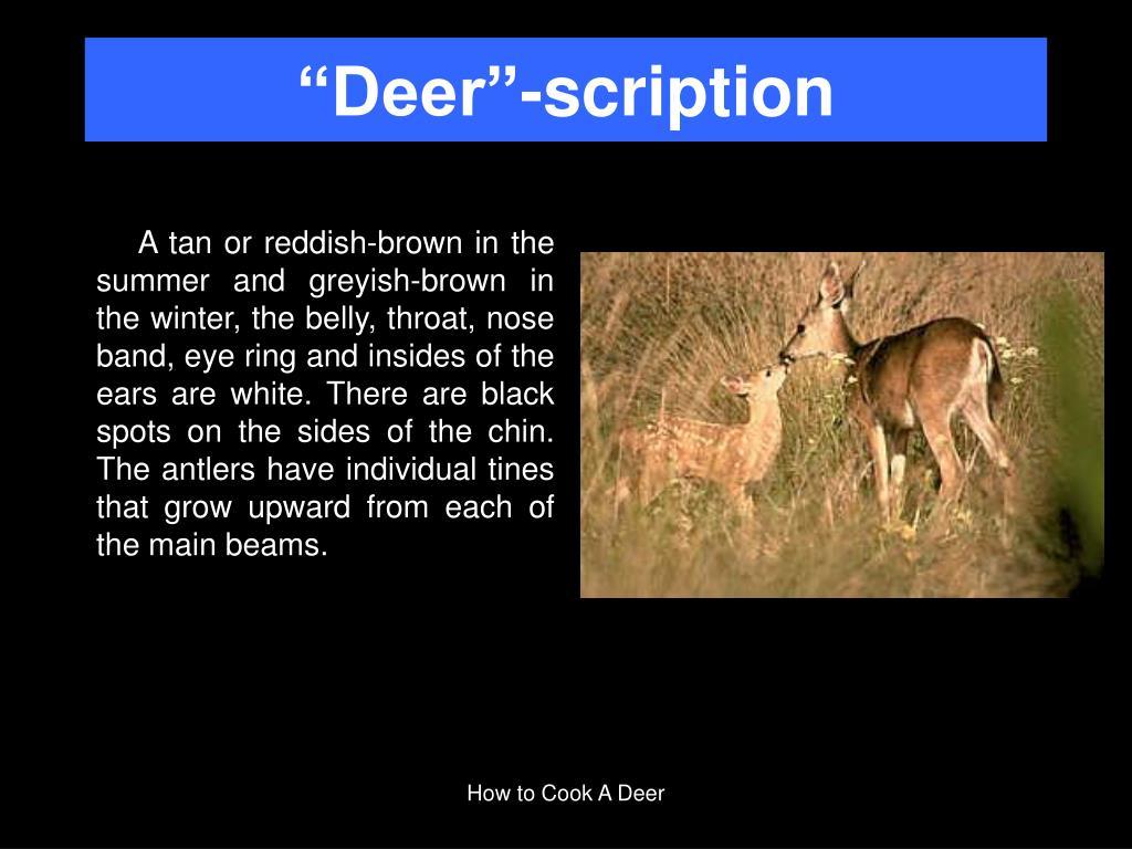 """Deer""-scription"