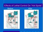 effects of lethal control on hot spots