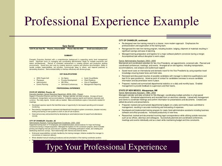 Professional Experience Example