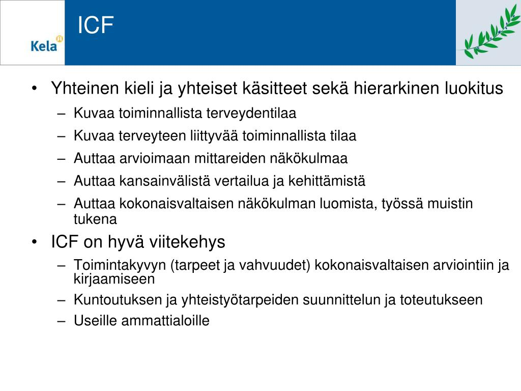 Icf Arviointilomake