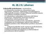 hl 28 2 l heinen