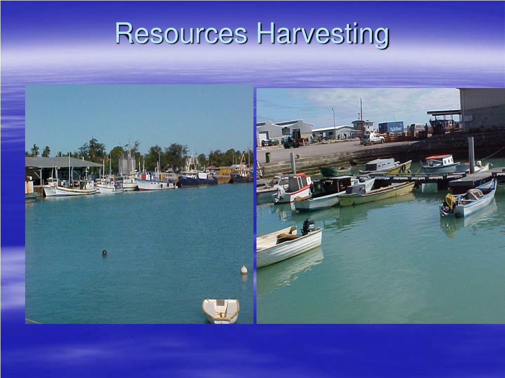 Resources Harvesting