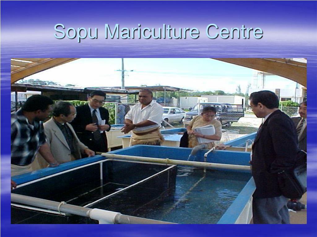 Sopu Mariculture Centre