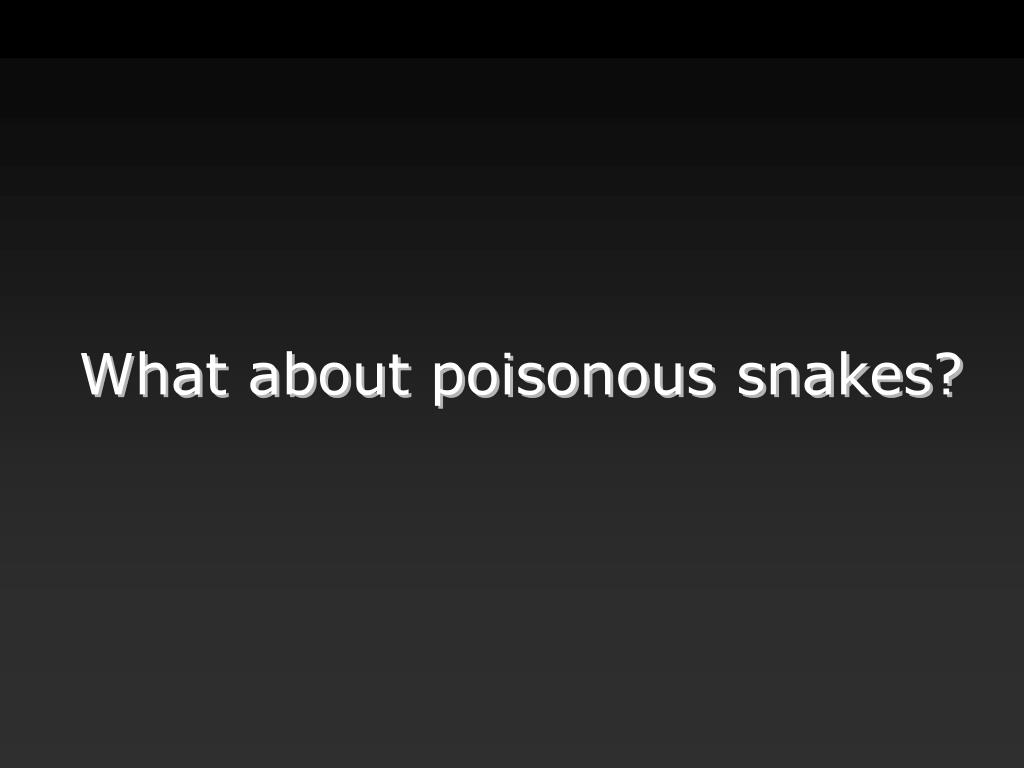 What about poisonous snakes?