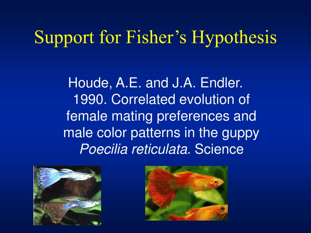 Support for Fisher's Hypothesis