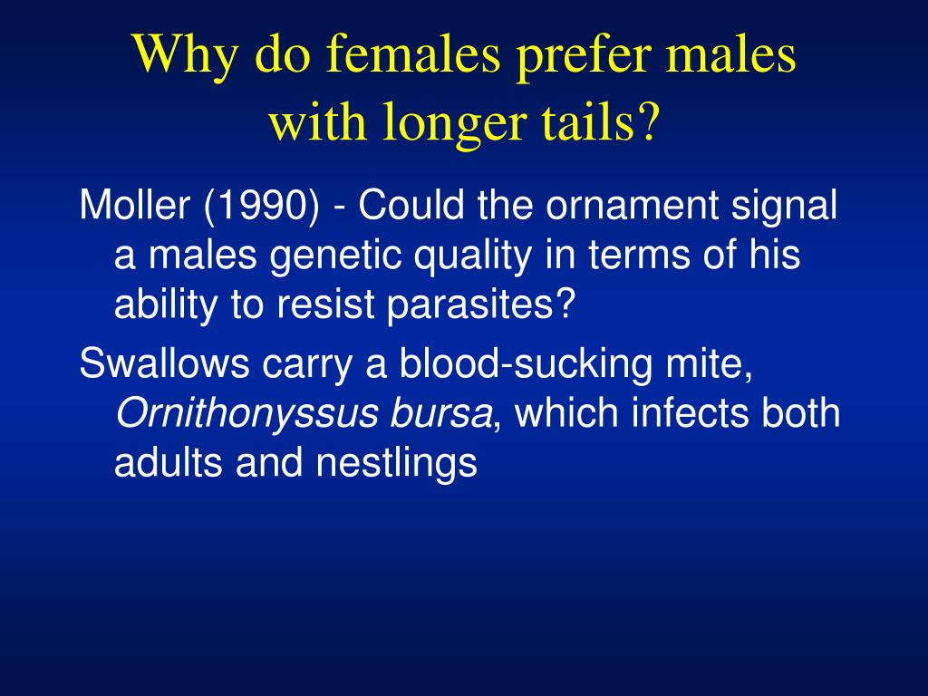 Why do females prefer males with longer tails?