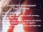 growth and development first trimester