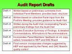 audit report drafts