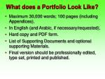 what does a portfolio look like