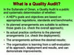 what is a quality audit
