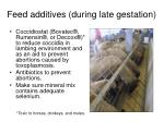 feed additives during late gestation