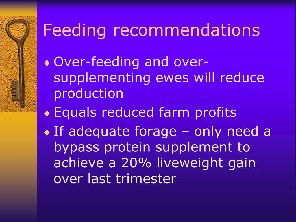 Feeding recommendations