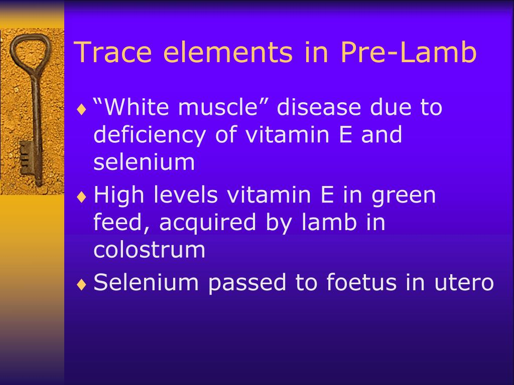 Trace elements in Pre-Lamb