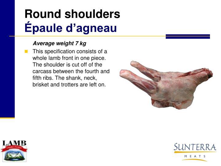 Round shoulders paule d agneau