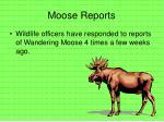 moose reports