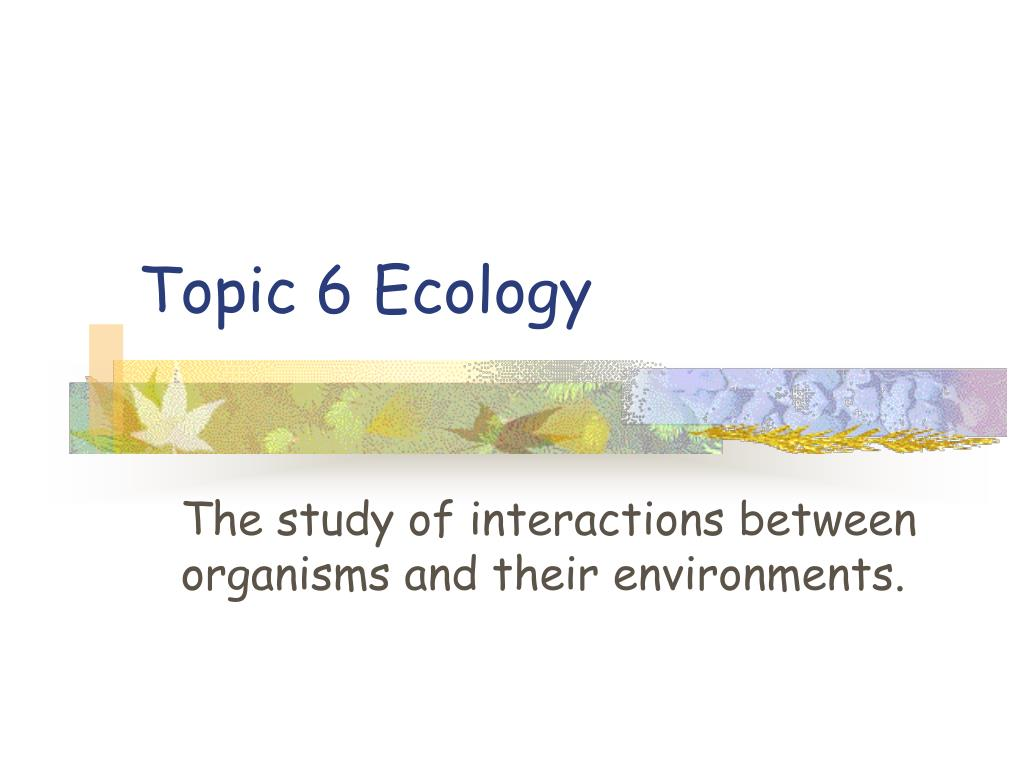 topic 6 ecology l.