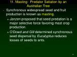11 masting predator satiation by an australian tree