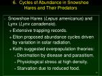 6 cycles of abundance in snowshoe hares and their predators