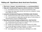 rutting call hypotheses about short term functions