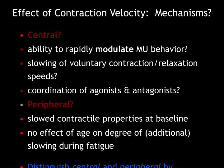 Effect of Contraction Velocity:  Mechanisms?