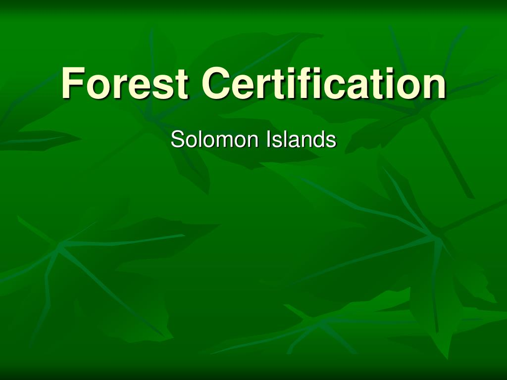 forest certification l.