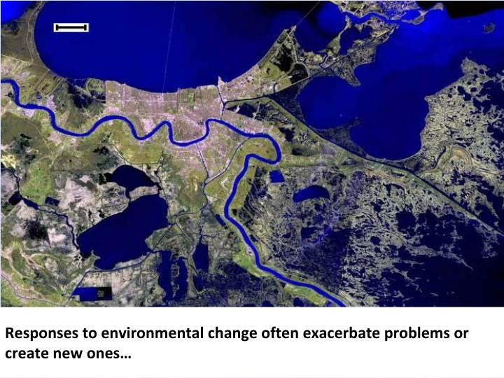 Responses to environmental change often exacerbate problems or create new ones