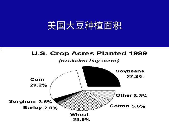 美国大豆种植面积