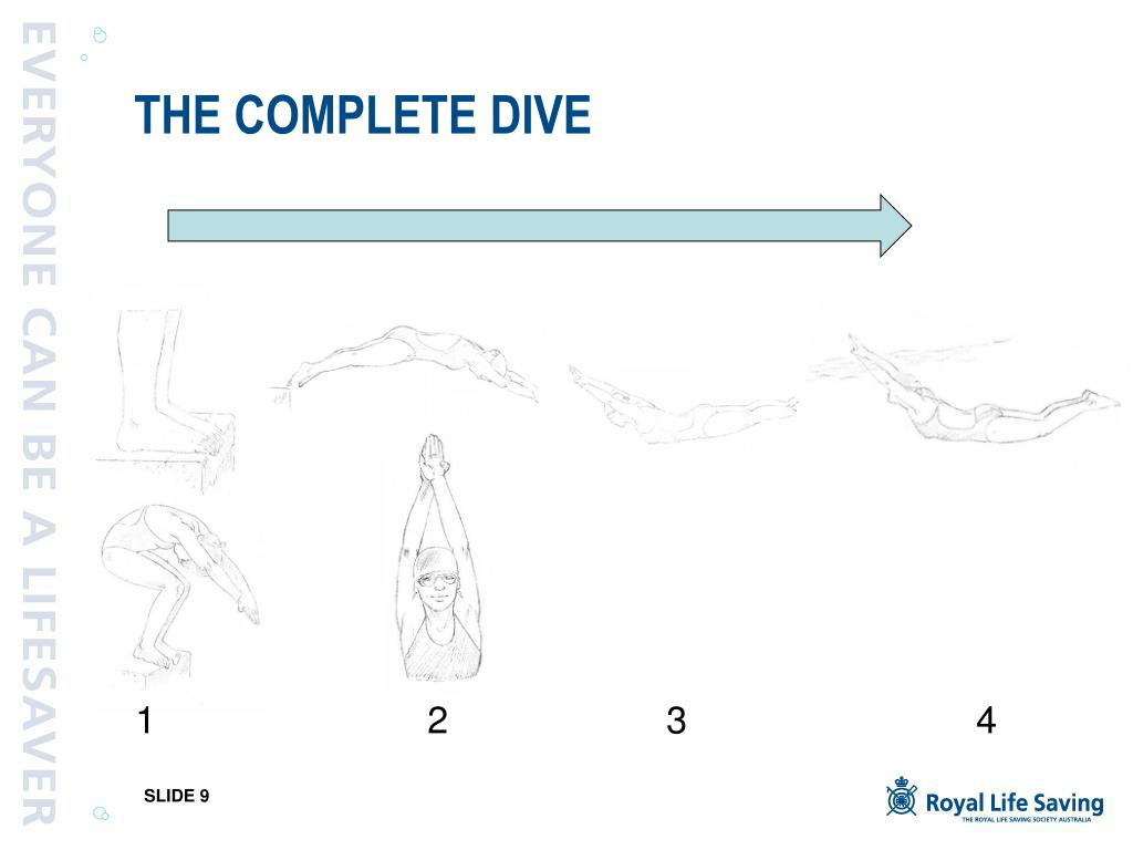 THE COMPLETE DIVE