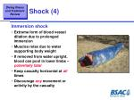 shock 4