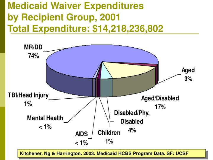 Medicaid Waiver Expenditures