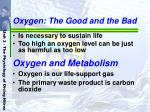 oxygen the good and the bad