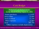 cash budget40