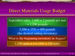 direct materials usage budget18