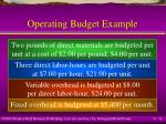 operating budget example12