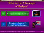 what are the advantages of budgets