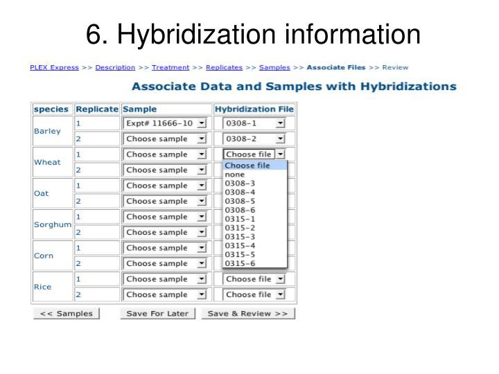 6. Hybridization information