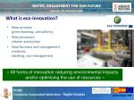 what is eco innovation